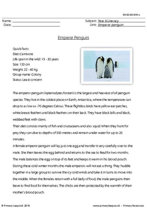 activity worksheets penguin readers reading comprehension assessment ks2 comprehension primary resources and interesting facts