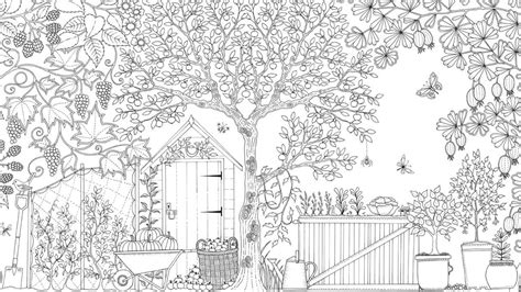 mindfulness colouring book secret garden what s the science colouring in books
