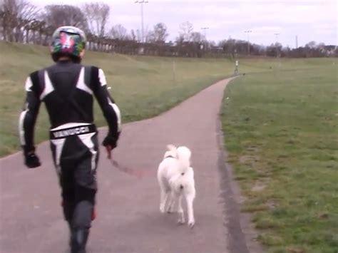 Motorrad Ohne Anmeldung Zum T V by Motorradfahrer Alltag Im Winter Saisonkennzeichen Schicksal