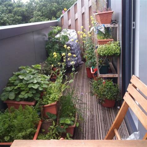 Apartment Deck Plants 33 Small Balcony Designs And Beautiful Ideas For