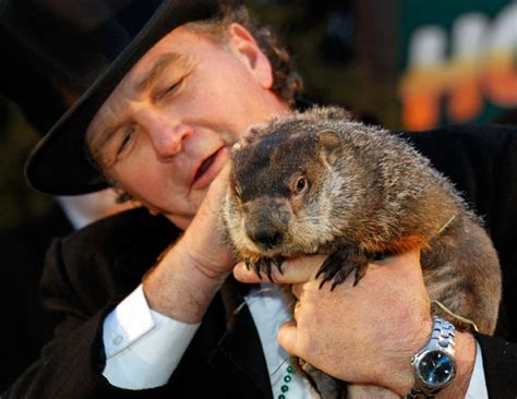 groundhog day jpg groundhog day 2012 punxsutawney phil predicts six more