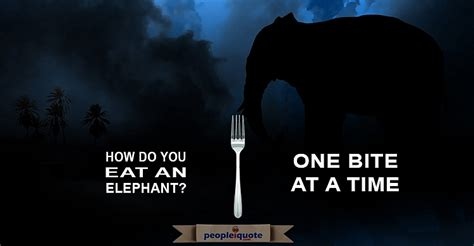 Which Do You Eat by How Do You Eat An Elephant One Bite At A Time Dave