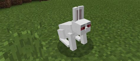 killer bunny killer bunny add on minecraft pe mods addons