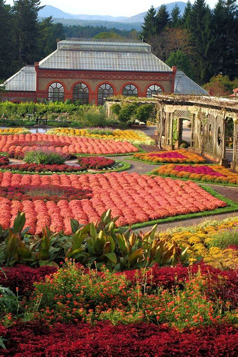 fall garden nc 34 best images about asheville fall color 2015 on