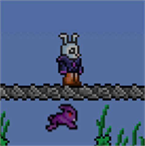 Terraria Vanity Combos by Bunny Terraria Wiki Fandom Powered By Wikia