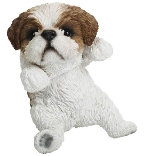 shih tzu hanging hanging shih tzu puppy statue natures gallery all products bc83604 allsculptures