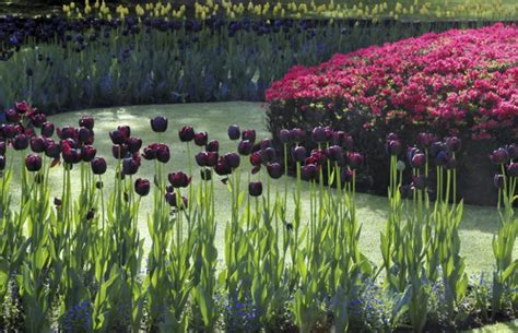 giardini botanici di villa taranto giardini botanici di villa taranto