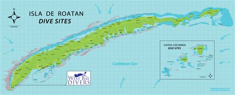 dive roatan dive west bay divers