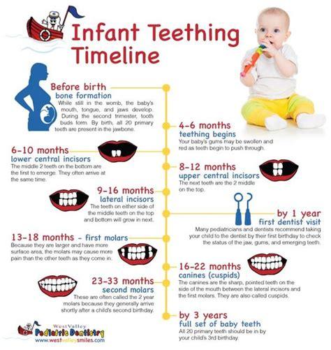 teething for babies teething timeline and diy on
