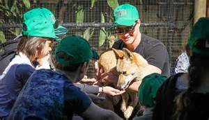 junior zoo keeper training at cooberrie park wildlife