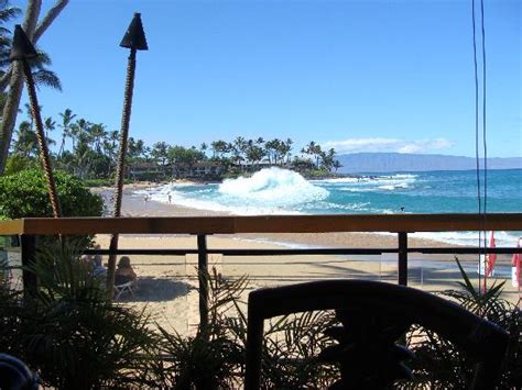 sea house maui our view from the table picture of sea house restaurant lahaina tripadvisor