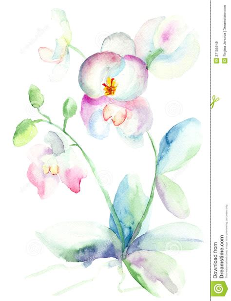 watercolor tattoos regina beautiful orchid watercolor illustration orchids