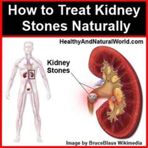 How To Naturally Detox Kidneys by Kidney Cleanse On Kidney Cleanse Hospitals
