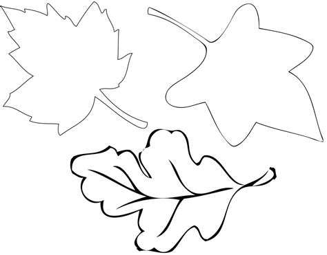 paper leaf template autumn leaf stencil clipart best