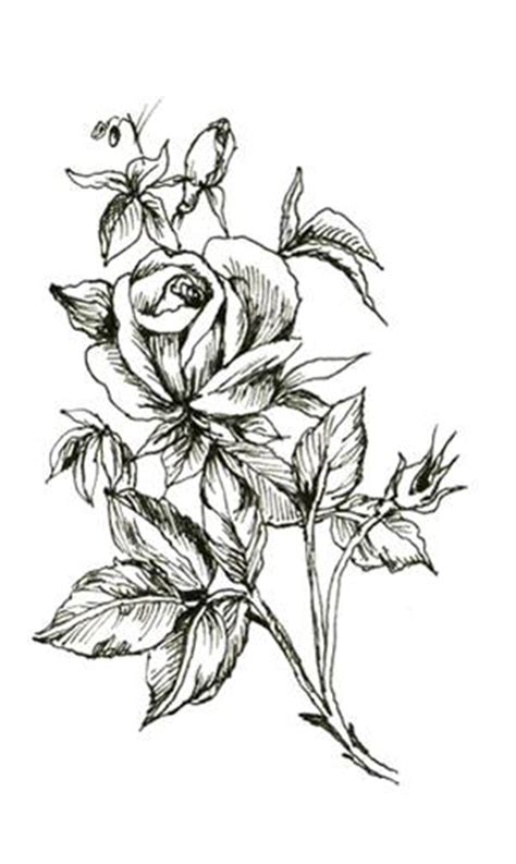 roses tattoo designs black and white trend styles black and white