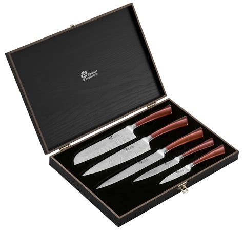 coffret de couteaux de cuisine coffret 5 couteaux de cuisine pradel effet damas