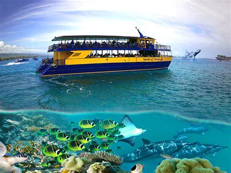 glass bottom boat kauai blue sea cruises dolphin adventure afternoon glass