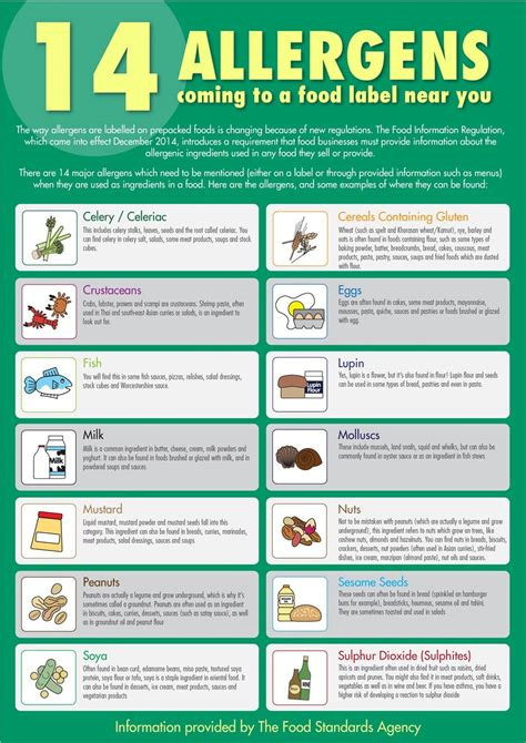 allergen free food food allergen guide for staff a3 poster