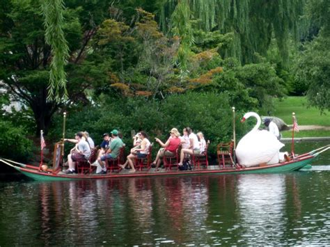 swan boats new york 1000 images about let s go to the rides on pinterest