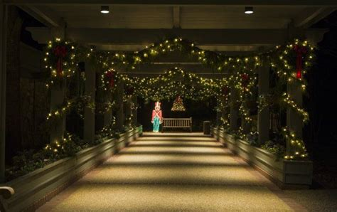 Callaway Gardens Lights by 21 Best Images About In Lights On