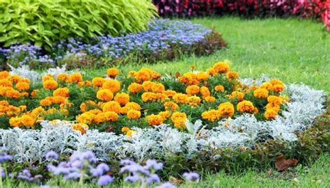 simple flower bed ideas easy flower bed ideas image mag