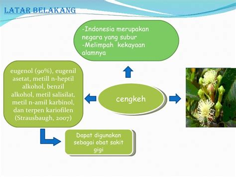 Minyak Cengkeh kimia organik lanjut