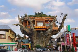 Incredible Houses by The Incredible Tree House Restaurant In Naha Japan The