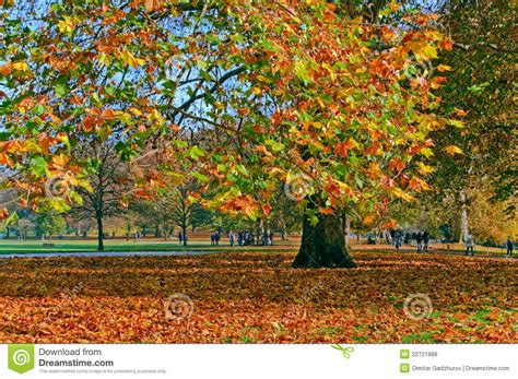 background green park london autumn in green park london stock photo image 22721888