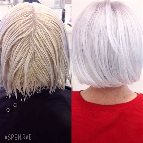 Shades Eq 9t | from brassy to classy ice white hair modern salonpre