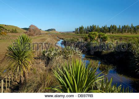Bc Lovina Stripe new planted field stock photo royalty free image 97710556 alamy