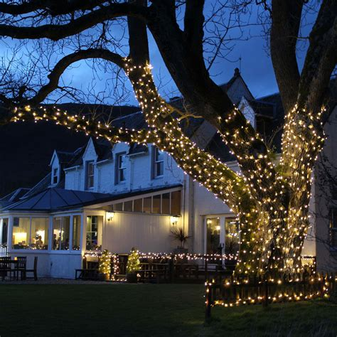 how many lights on christmas tree illuminate your backyard and garden with outdoor tree lights lighting and chandeliers