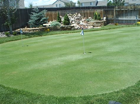 putting greens backyard golf green photos