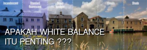 pengertian white balance fungsi   pengatur