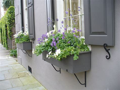 shutters and window boxes gray shutters window box must do