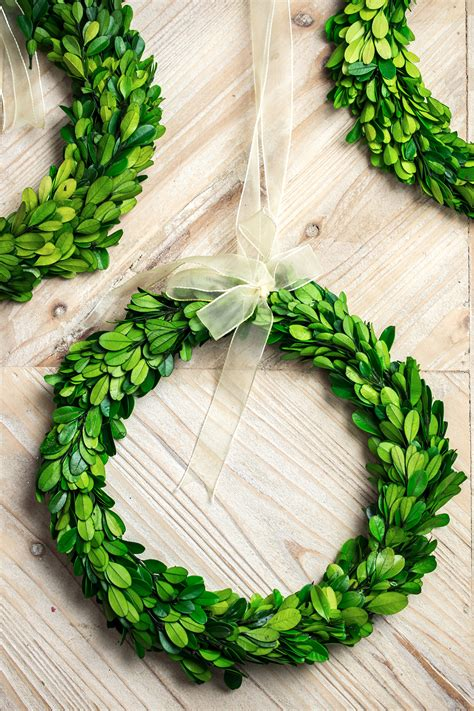 10 inch artificial boxwood wreaths boxwood wreath 10 quot preserved boxwood
