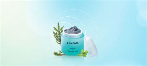 Laneige Mini Pore Waterclay Mask mini pore waterclay mask laneige