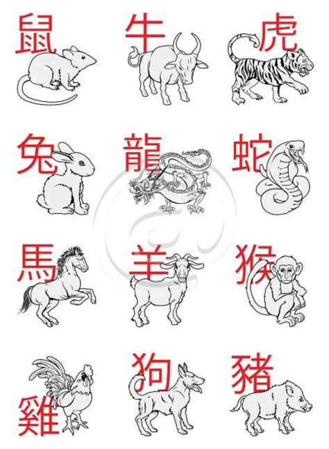 new year zodiac 1996 10 best images about zodiac signs on