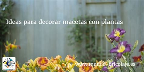 como decorar plantas con macetas ideas para decorar macetas con plantas