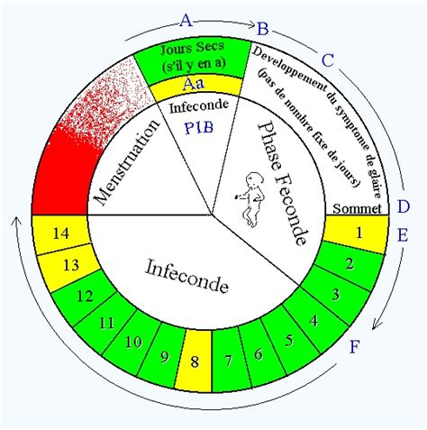 Contraception Calendrier La M 233 Thode D Ovulation Billings Mob M 233 Thodes Naturelles