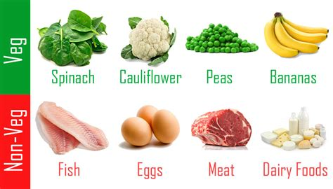 protein rich foods benefits of high protein rich foods stuff that matters