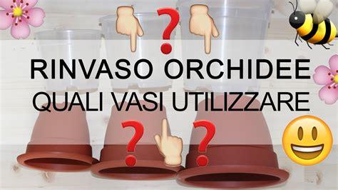 vasi per orchidee rinvaso orchidee quali vasi utilizzare il mito sul