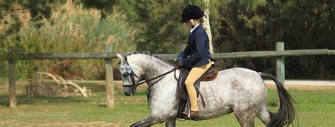 perth horse pony club equestrian western australia