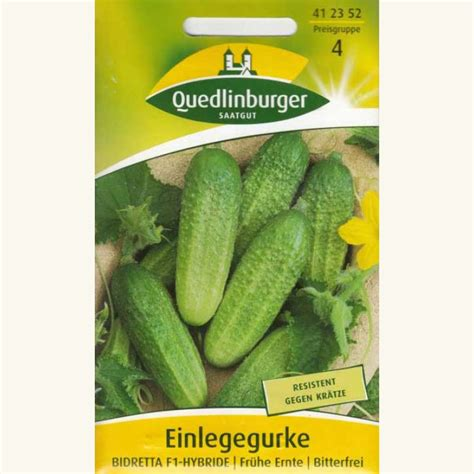 fußbodenheizung gut oder schlecht samen saatgut gurke einlegegurke bidretta f1 cucumis