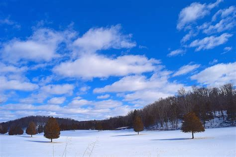 open snow free images landscape tree nature outdoor open snow
