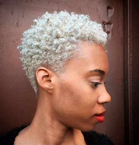 short afro gray styles 20 twa hairstyles that are totally fabulous