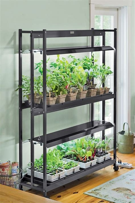 indoor indoor grow lights optimizing  plant growth