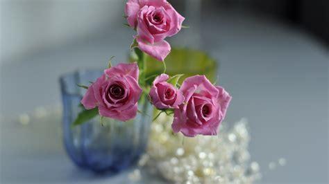 beautiful flowers wallpapers latest news latest flowers wallpapers hd full hd 1080p 9 hd