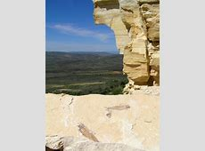 The Paleontology Of Fossil Butte National Monument Part ... Listen To Podcasts Online