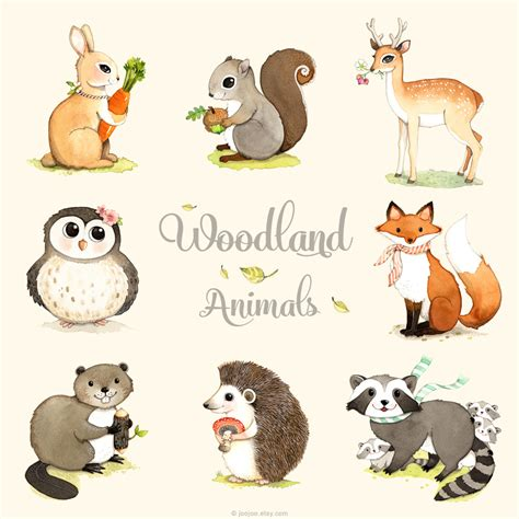 tiny baby found in woods a memoir books woodland animals print set find a complete set of 8