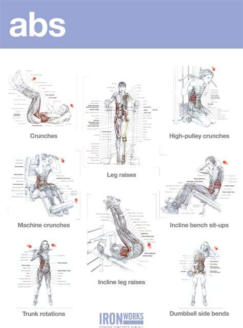 blogarticleabs and shoulders workout exles 41 iron works bodybuilding in birmingham